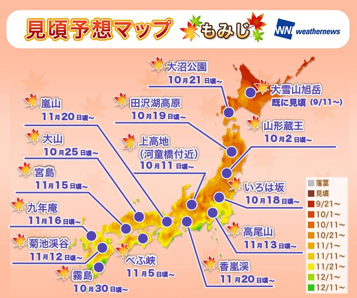 もみじの紅葉2015