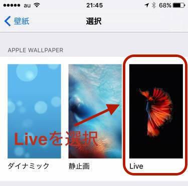LivePhotoをロック画面に設定002