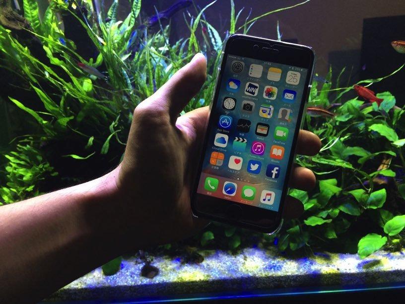 iPhone6s レビュー003