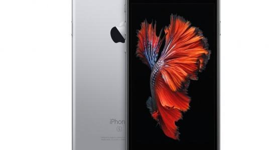 ベタ005 iPhone6s