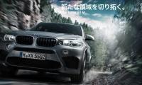 BMW-X5M