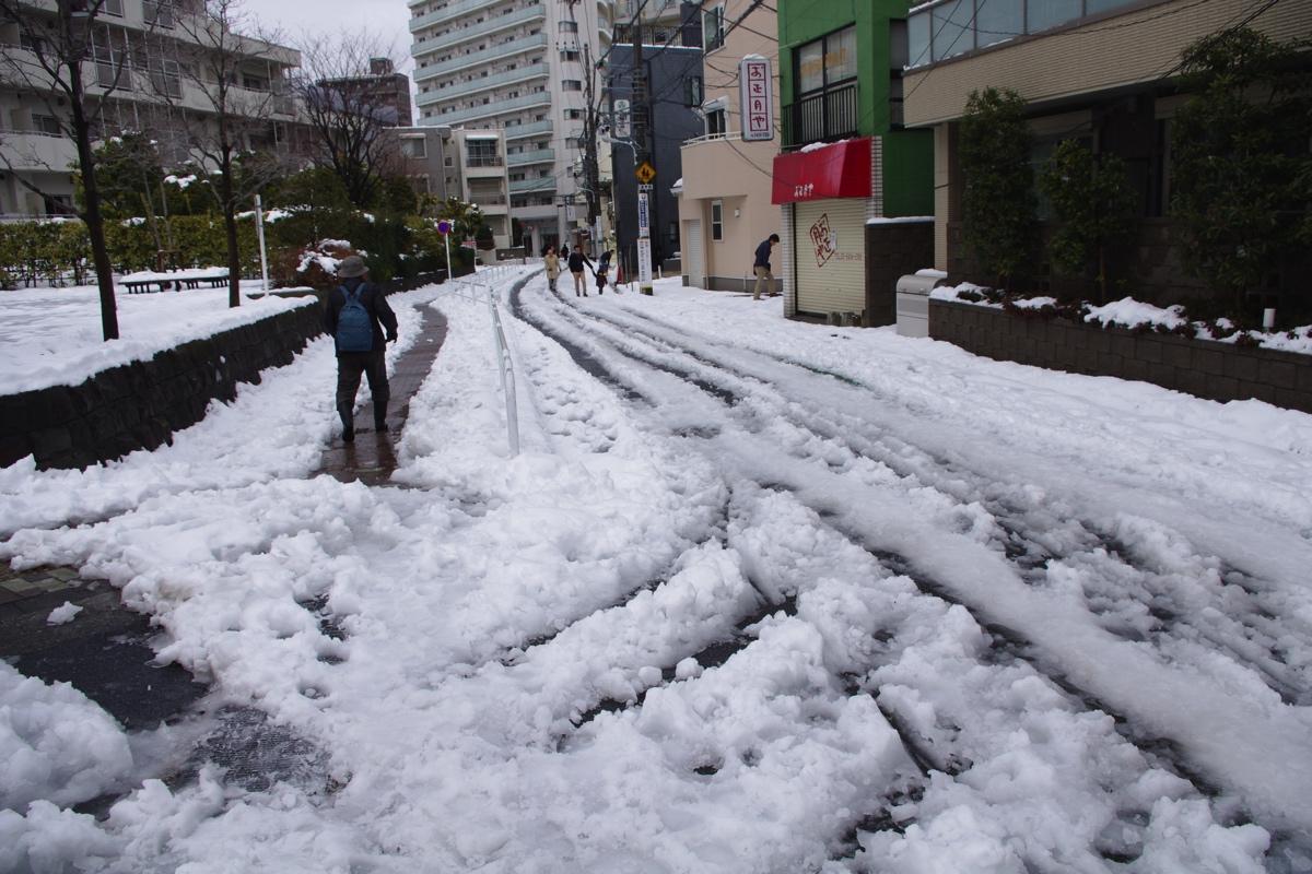 tokyo-snow-fall2014